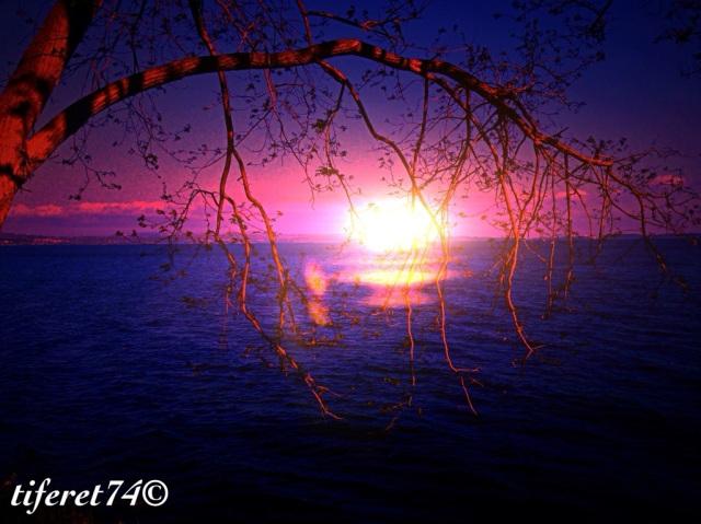 20140422-230240.jpg